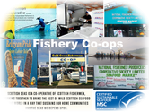 Fishery co-ops